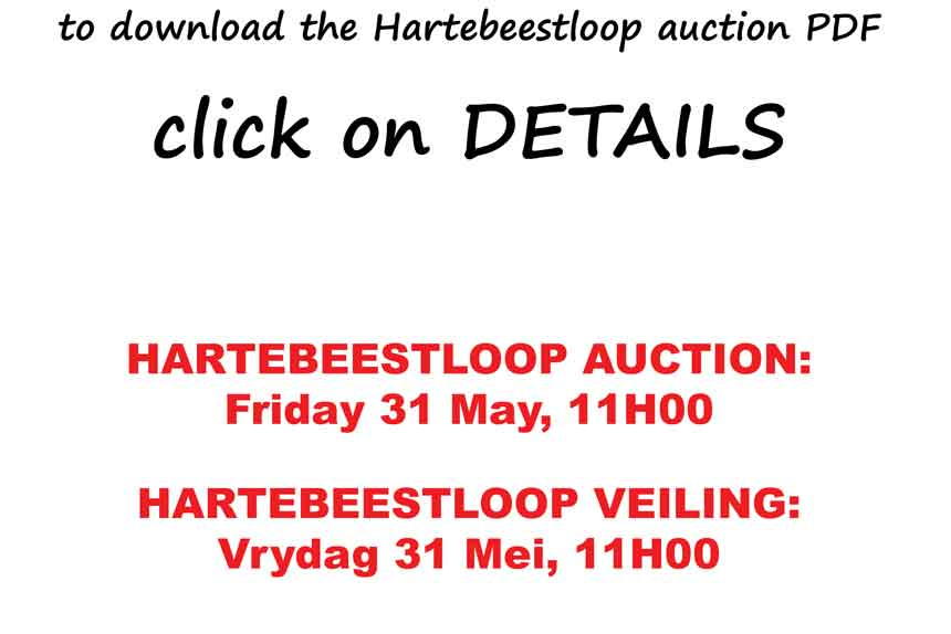 Hartebeestloop Auction PDF