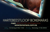 Hartebeestloop Advert for RSA Bonsmara Journal 2014