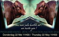 Ons nooi julle uit!<br><i>We invite you!!</i>