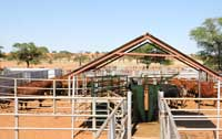 Hartebeestloop cattle management facilities