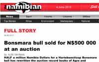 THE NAMIBIAN: Bonsmara bull sold for N$ 500 000 at an auction